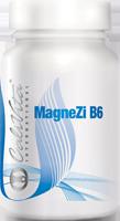 MagneZi B6 (90 tablet)